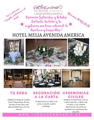 Hotel Meliá, Avenida de America
