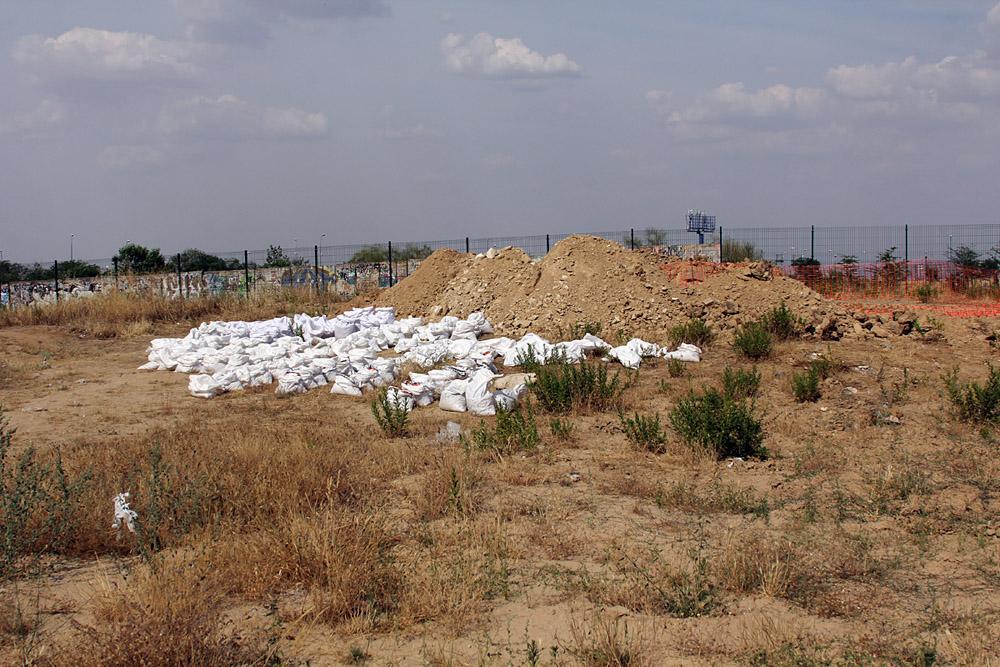 Los restos de una tortuga del pleistoceno retrasan las obras de Mercadona