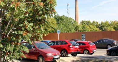 La calle Dédalo recibirá las primeras viviendas prefabricadas