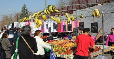 El Pleno aprueba insatalar un mercadillo en la calle de La Esfinge