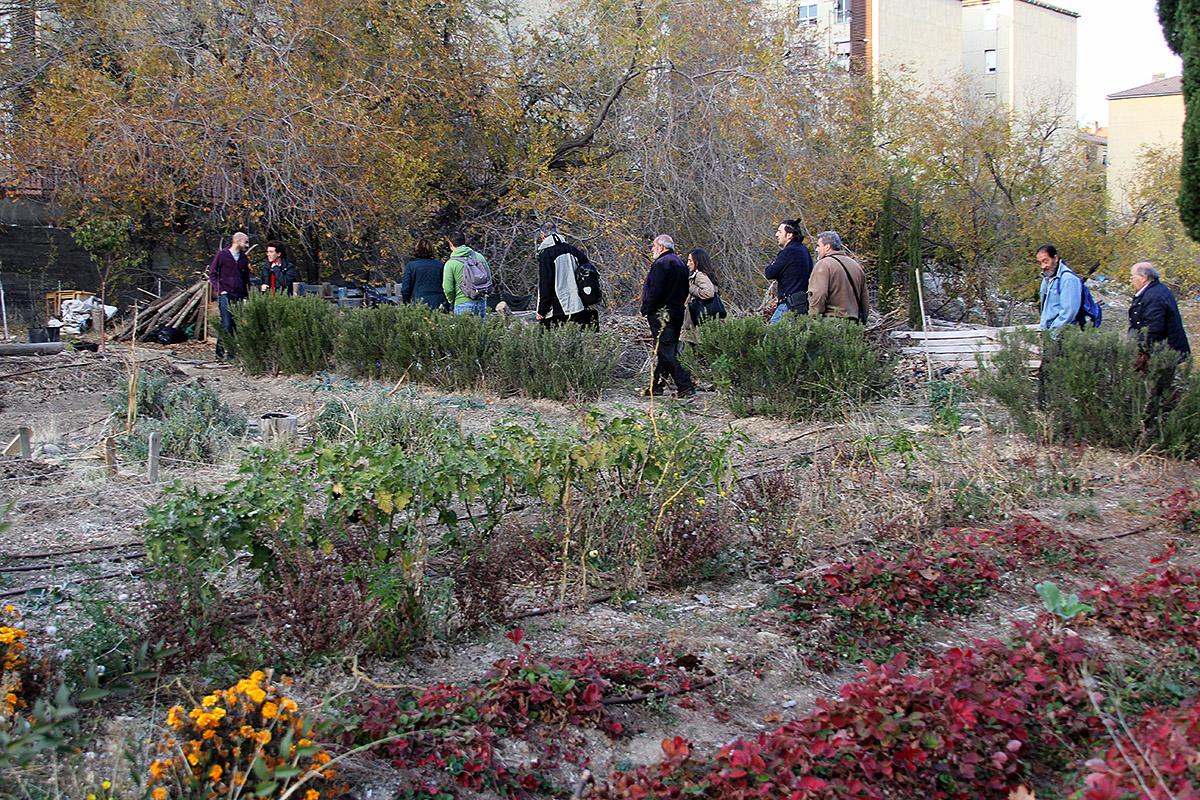 La Huerta de Conchi apuesta por un barrio saludable en el CMS