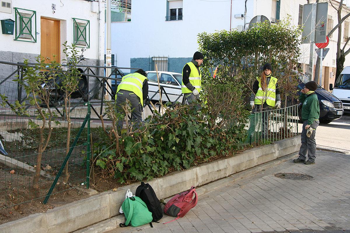 Proyectos de empleo en plena inclusión Madrid