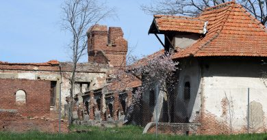 Patrimonio ha salvado de la ruina los edificios de Torre Arias