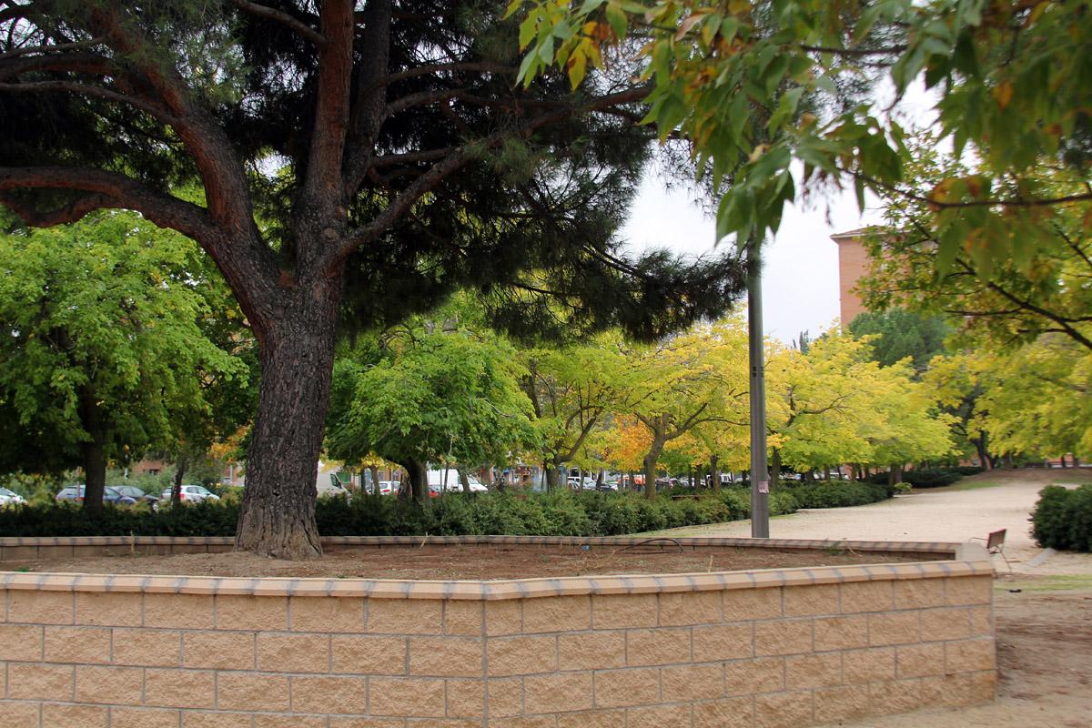 La limpieza y mantenimiento de zonas verdes a debate