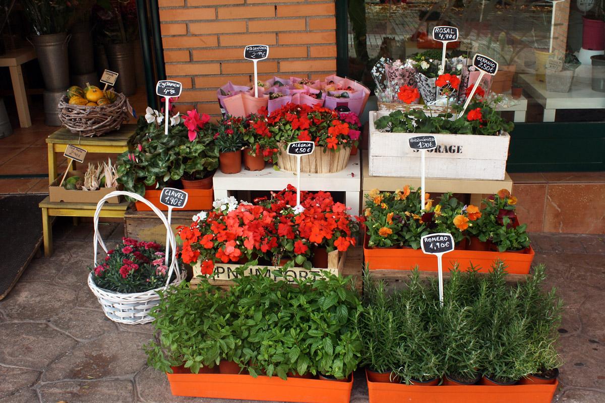 Natural Bouquets, una floristería como las de Holanda