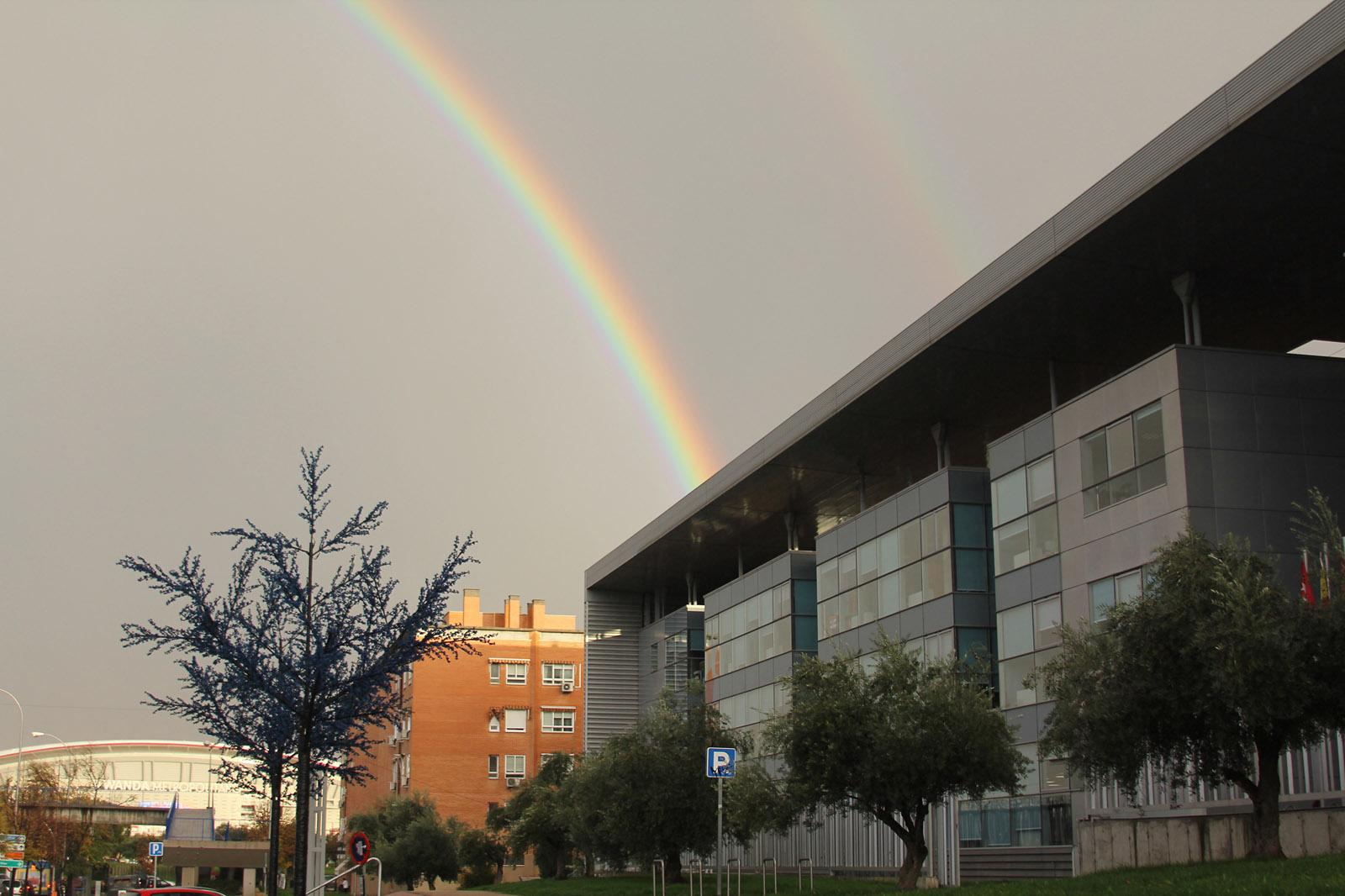 pleno junta arco iris