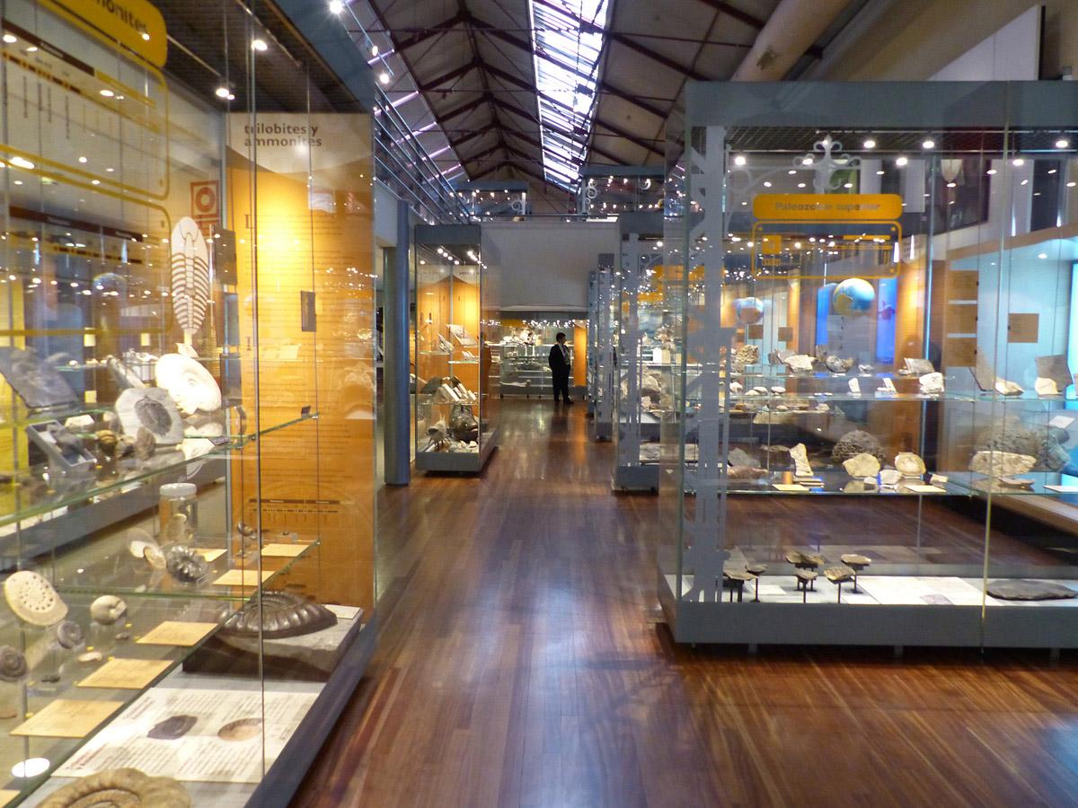 Interior_del_Museo_Nacional_de_Ciencias_Naturales_de_Madrid_2017_08