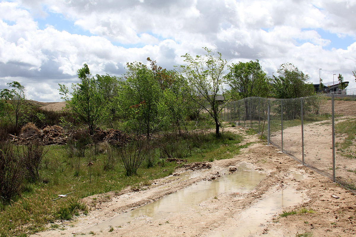 El parque de Carlos Llamas