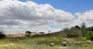 Los ecologistas piden salvar el parque de Carlos Llamas