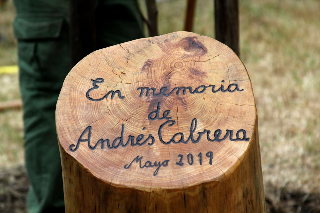 Una placa grabada en un tronco de madera con un lema: En memoria de Andrés Cabrera (Mayo 2019) fue la aportación del Ayuntamiento de Madrid