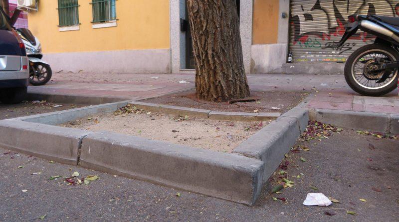 El Ayuntamiento pavimentará alcorques vacíos en aceras para mejorar la circulación peatonal