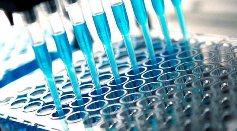 Ingenasa produce semanalmente medio millón de ensayos de anticuerpos con soporte para laboratorio y un millón de test rápidos al mes