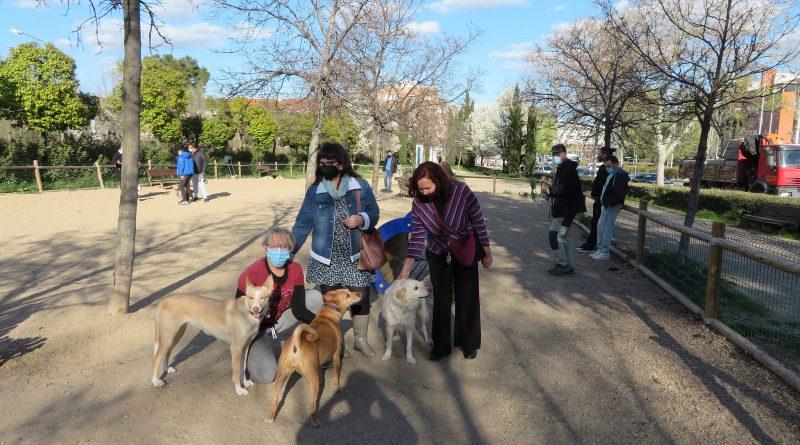 Espacio para mascotas y convivencia