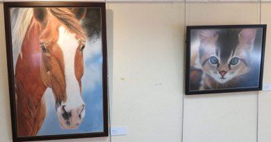 """Daniel Castañón expone """"Trazos Vivos"""" en el Centro Cultural Machado"""